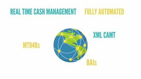Cash Management - Salmon Treasurer